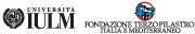 Master in management delle risorse artistiche e culturali (MaRAC) - IULM