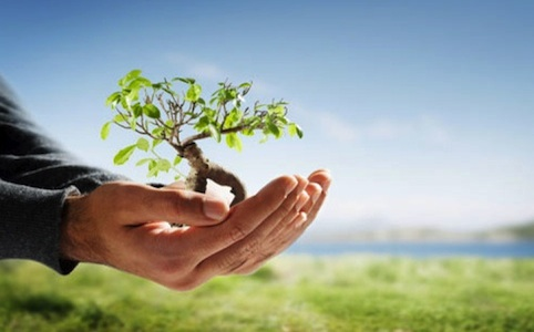 III Edizione del ''Green Management Programme'' di ISTUD