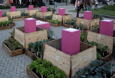 Imparate l'arte dell'orto-giardino con ISAD