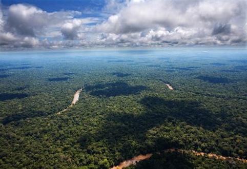 Ultimi giorni per iscriversi a Tropimundo, il Master Erasmus dedicato alla biodiversità