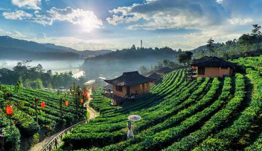 6 passi per iniziare a studiare in Cina