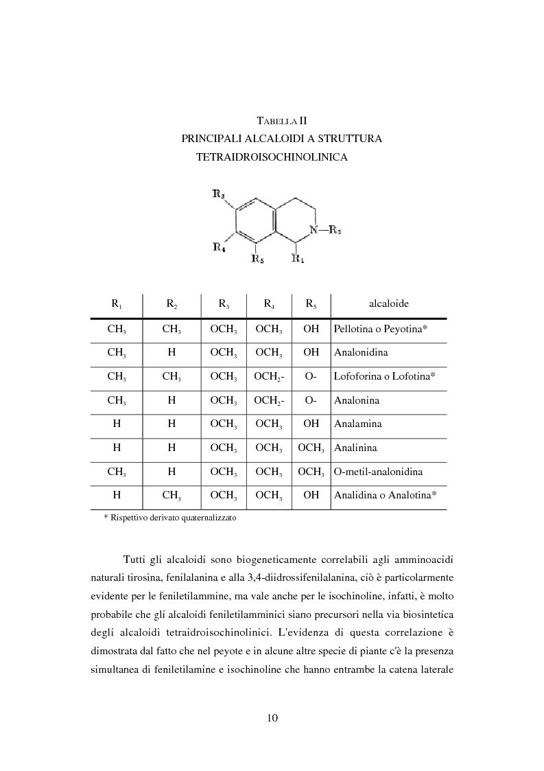 Anteprima della tesi: Peyote: profilo farmaco-tossicologico e modelli culturali nelle popolazioni indigene nordamericane, Pagina 10