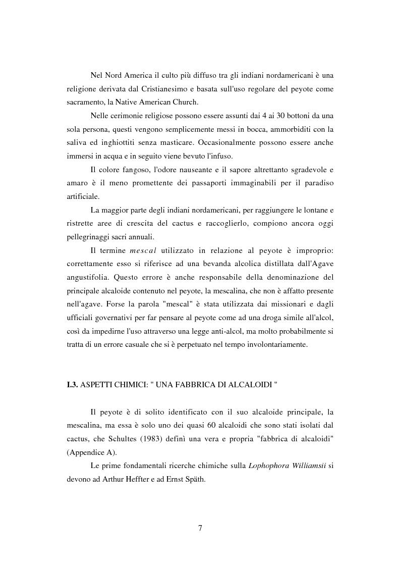 Anteprima della tesi: Peyote: profilo farmaco-tossicologico e modelli culturali nelle popolazioni indigene nordamericane, Pagina 7