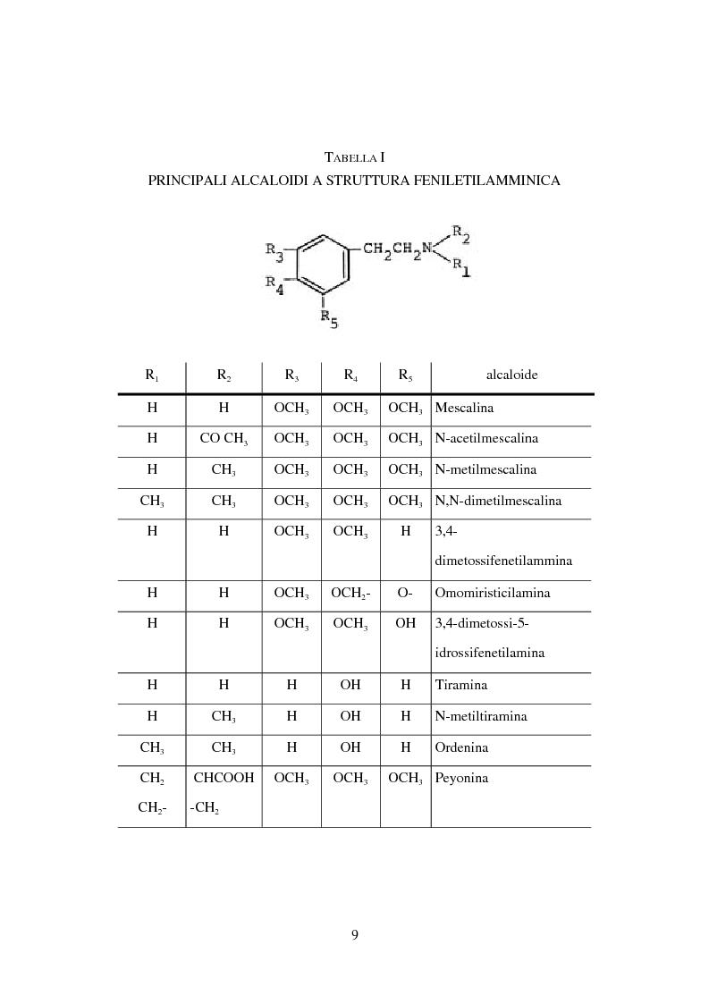 Anteprima della tesi: Peyote: profilo farmaco-tossicologico e modelli culturali nelle popolazioni indigene nordamericane, Pagina 9