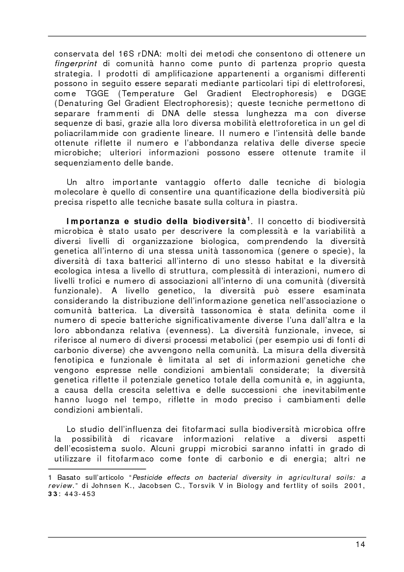 Anteprima della tesi: Degradazione e valutazione degli effetti sui microrganismi di una miscela di erbicidi sulfonilureici, Pagina 11