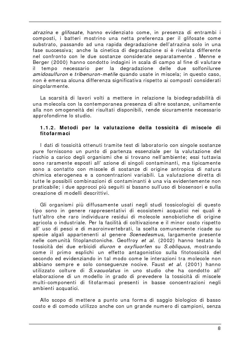 Anteprima della tesi: Degradazione e valutazione degli effetti sui microrganismi di una miscela di erbicidi sulfonilureici, Pagina 5