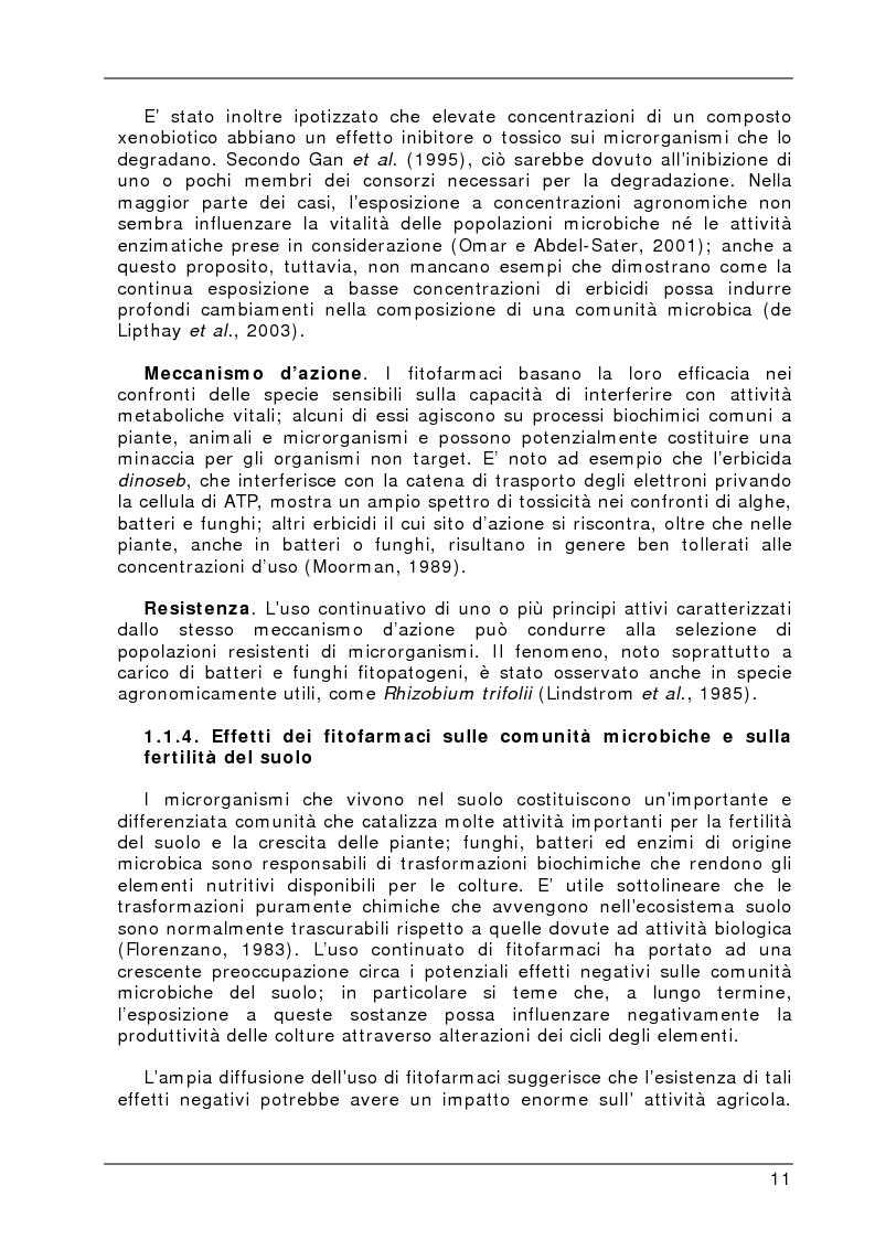 Anteprima della tesi: Degradazione e valutazione degli effetti sui microrganismi di una miscela di erbicidi sulfonilureici, Pagina 8