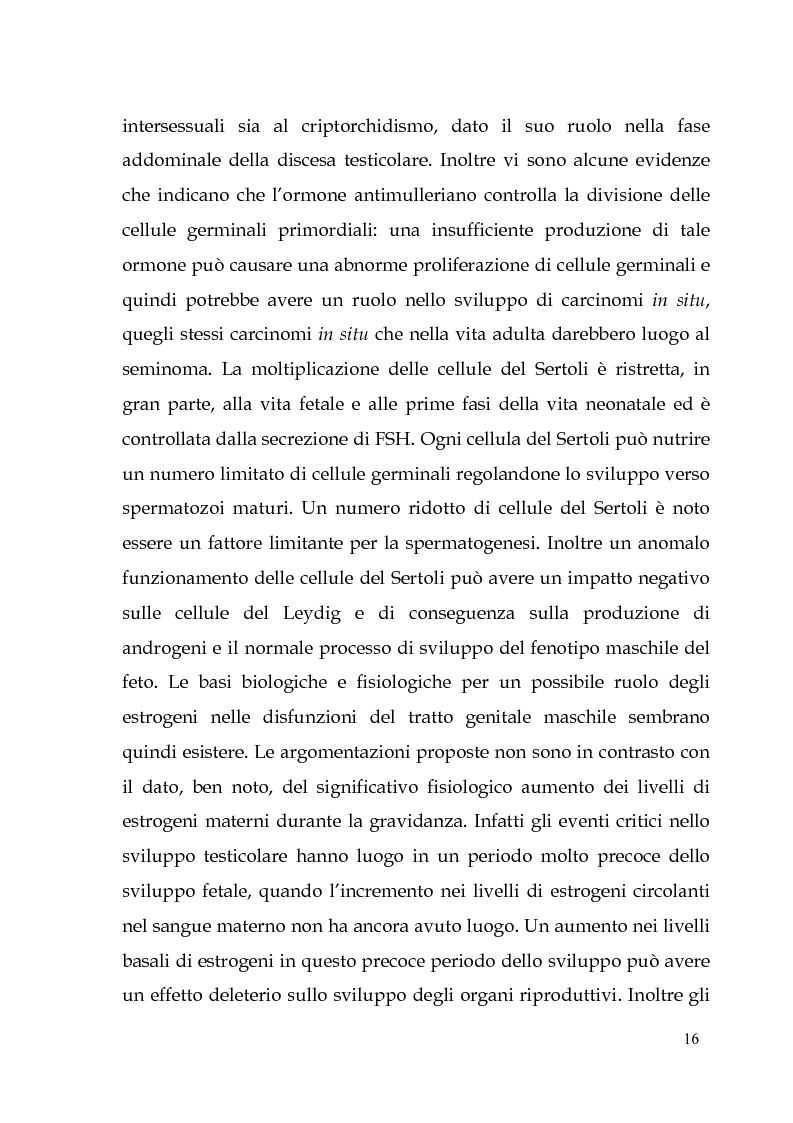 Anteprima della tesi: Endocrine Disruptors: Fertilità maschile e Metalli pesanti, Pagina 12