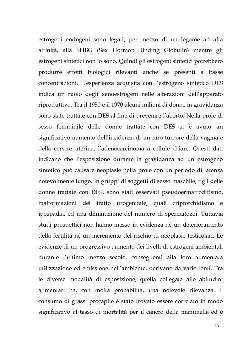 Anteprima della tesi: Endocrine Disruptors: Fertilità maschile e Metalli pesanti, Pagina 13