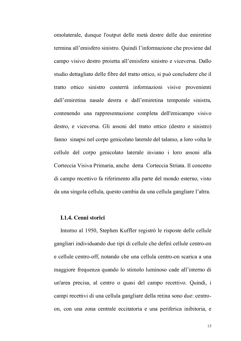 Anteprima della tesi: Ruolo dell'attenzione nella percezione visiva dell'orientamento, Pagina 11