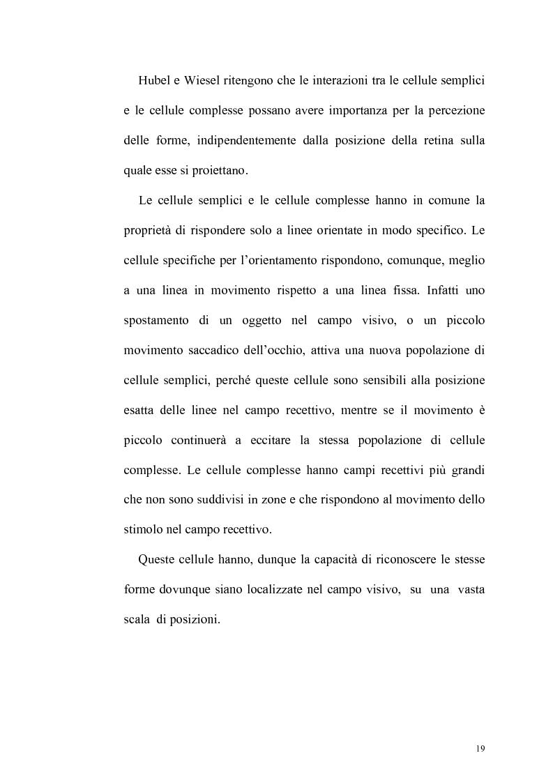 Anteprima della tesi: Ruolo dell'attenzione nella percezione visiva dell'orientamento, Pagina 15