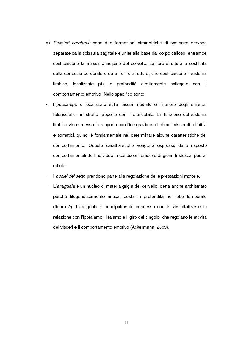 Anteprima della tesi: L'influenza di rabbia, paura e memoria sul comportamento alimentare: uno studio metodologico, Pagina 11