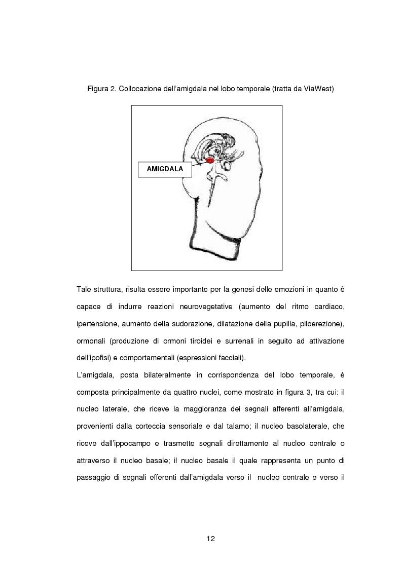 Anteprima della tesi: L'influenza di rabbia, paura e memoria sul comportamento alimentare: uno studio metodologico, Pagina 12