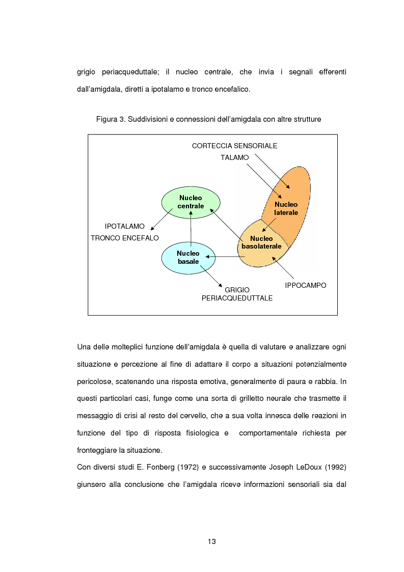 Anteprima della tesi: L'influenza di rabbia, paura e memoria sul comportamento alimentare: uno studio metodologico, Pagina 13