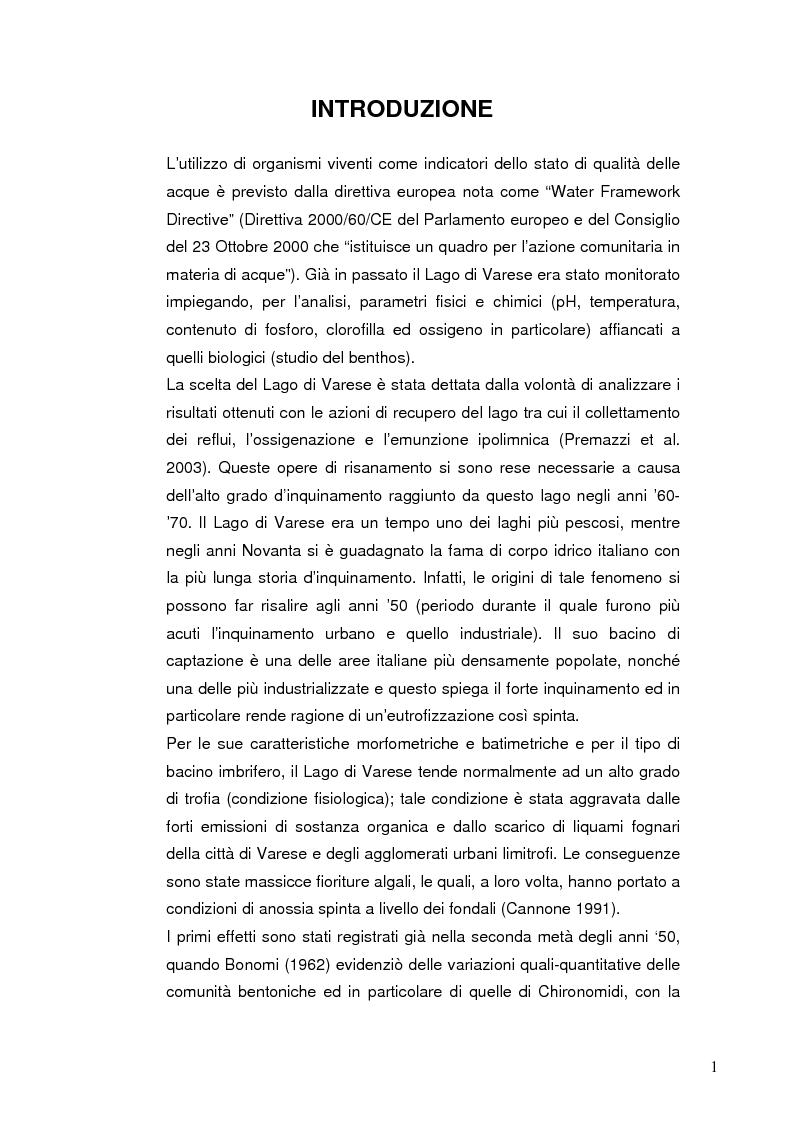 Anteprima della tesi: I Chironomidi (Insecta Diptera) come indicatori dello stato trofico del Lago di Varese, Pagina 2