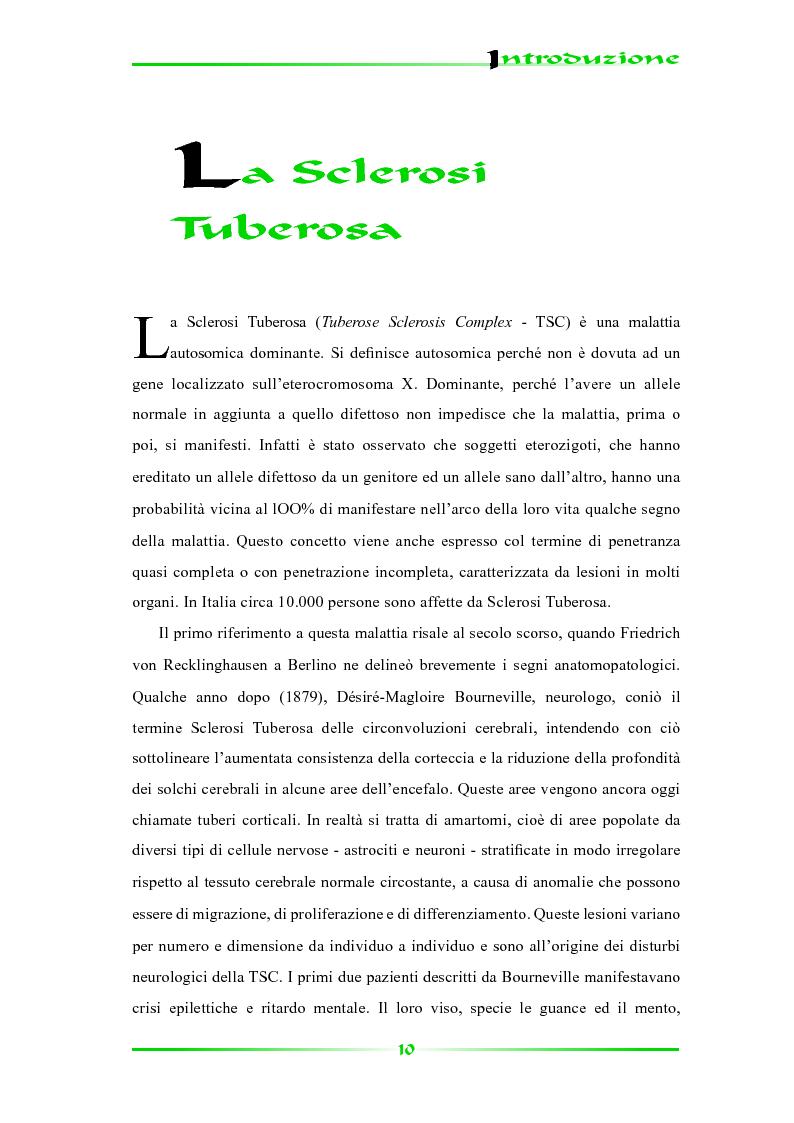 Anteprima della tesi: Espressione selettiva della survivina e sua regolazione nella Sclerosi Tuberosa, una patologia multisistemica, Pagina 5