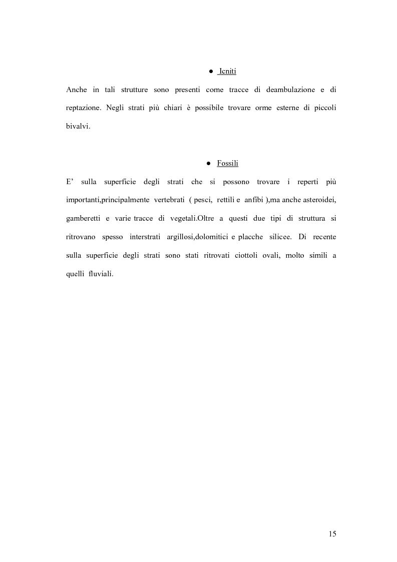 Anteprima della tesi: I coproliti del giacimento di Pietraroia (BN): analisi morfologica ed ipotesi paleoecologiche., Pagina 12