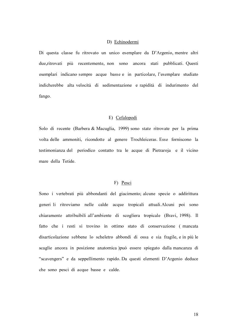 Anteprima della tesi: I coproliti del giacimento di Pietraroia (BN): analisi morfologica ed ipotesi paleoecologiche., Pagina 15