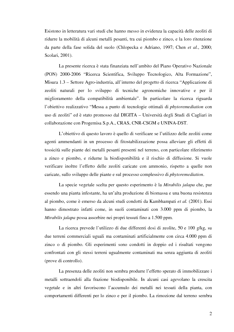 Anteprima della tesi: Effetti delle zeoliti naturali sul processo di phytoremediation di terreni contaminati da zinco e piombo, Pagina 2