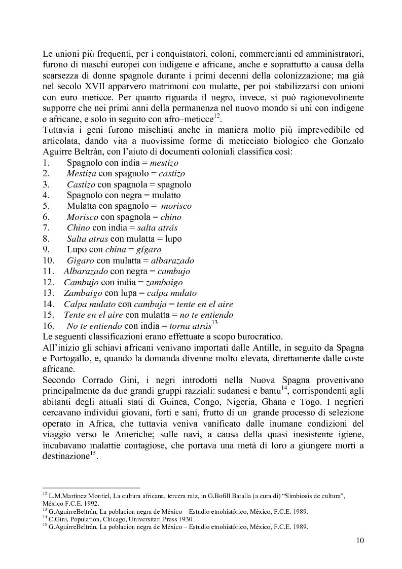 Anteprima della tesi: Identità e diritti delle minoranze etniche in Messico: la Costa Chica di Oaxaca e Guerrero, Pagina 6