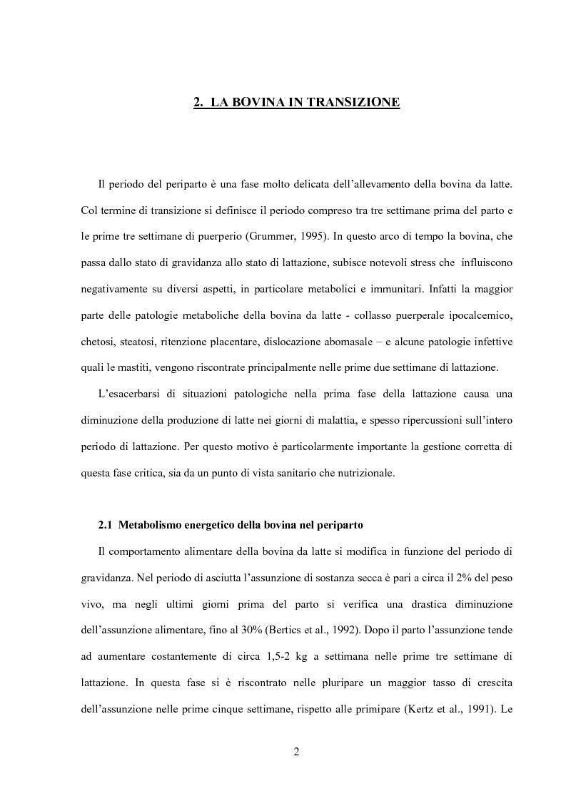 Anteprima della tesi: Somministrazione di due antiossidanti naturali alla bovina nel periparto: effetti sui parametri quali-quantitativi del latte e sullo stato ossidativo del siero, Pagina 2