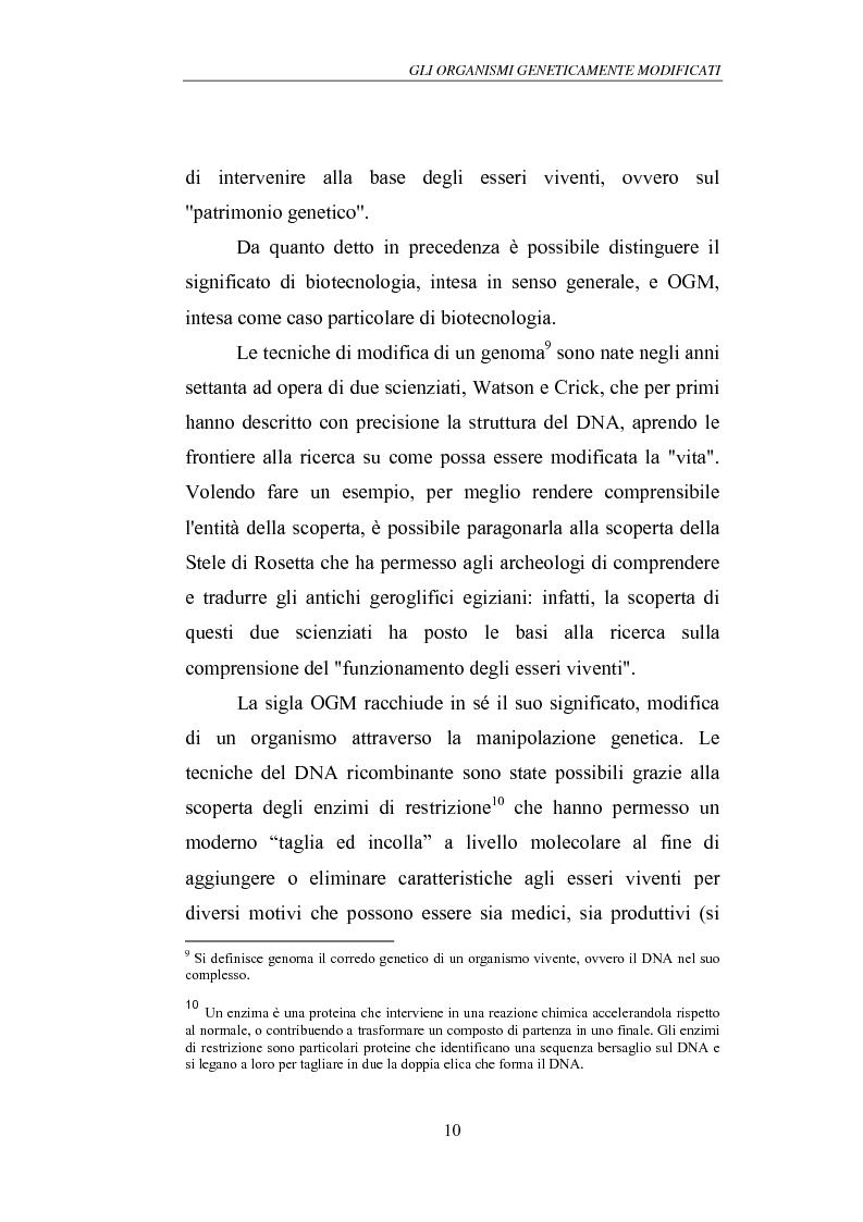 Anteprima della tesi: Gli Organismi Geneticamente Modificati (OGM), Pagina 14