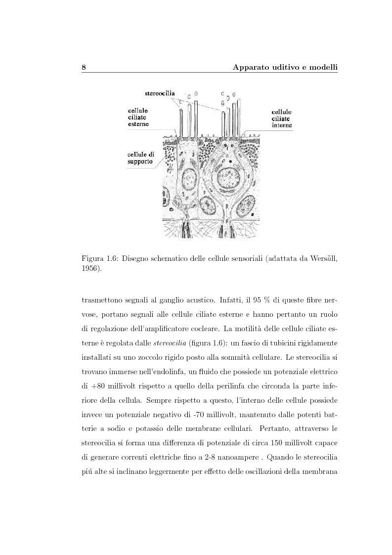 Anteprima della tesi: Modelli lineari e non lineari di partizione cocleare: loro realizzazione con filtri ad onda, Pagina 10