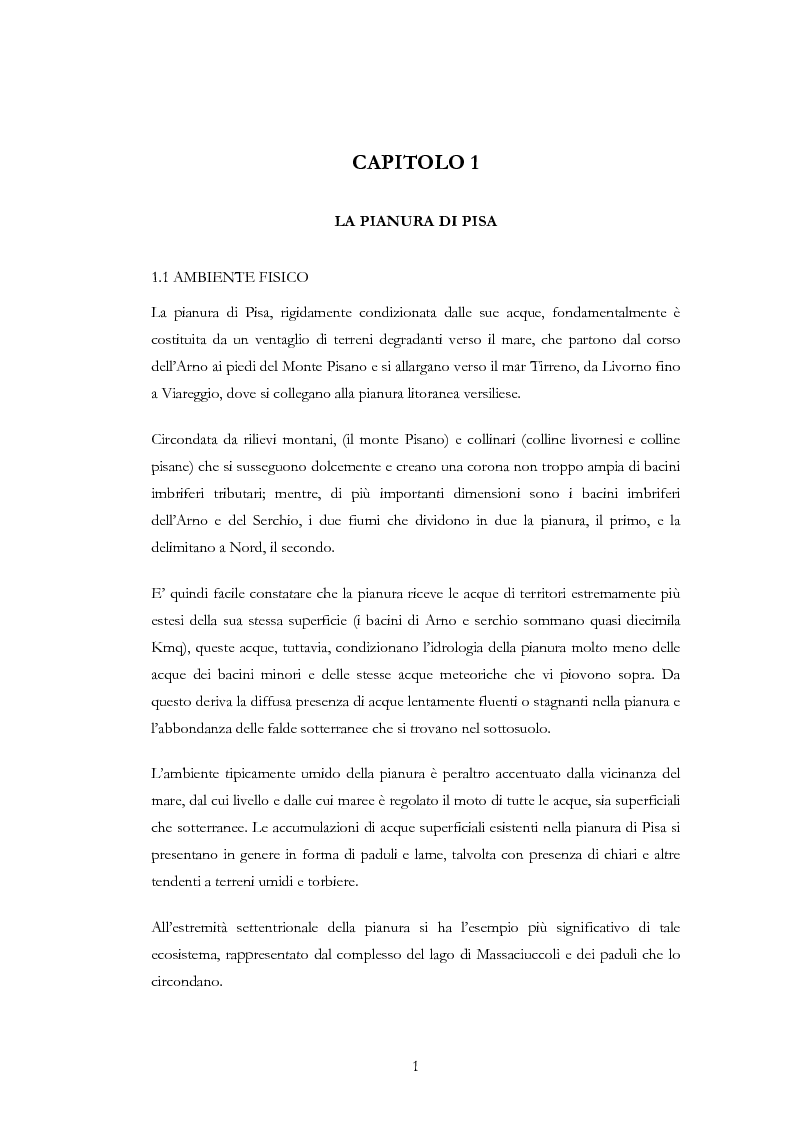 Anteprima della tesi: Interventi idraulici al fiume Arno nella storia, da Pontedera alla foce, Pagina 4