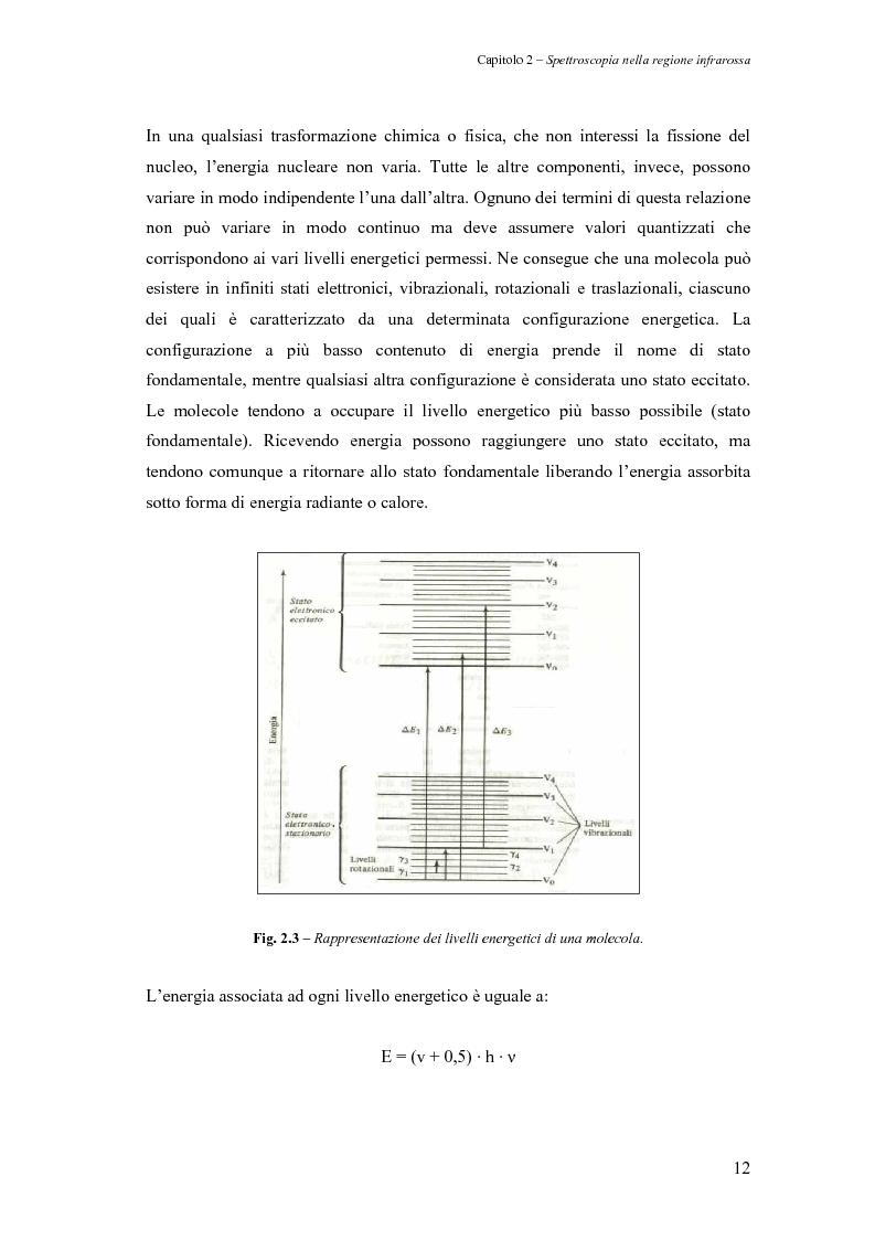 Anteprima della tesi: Sperimentazione di un sistema dinamico per la selezione Vis-NIR della frutta, Pagina 12