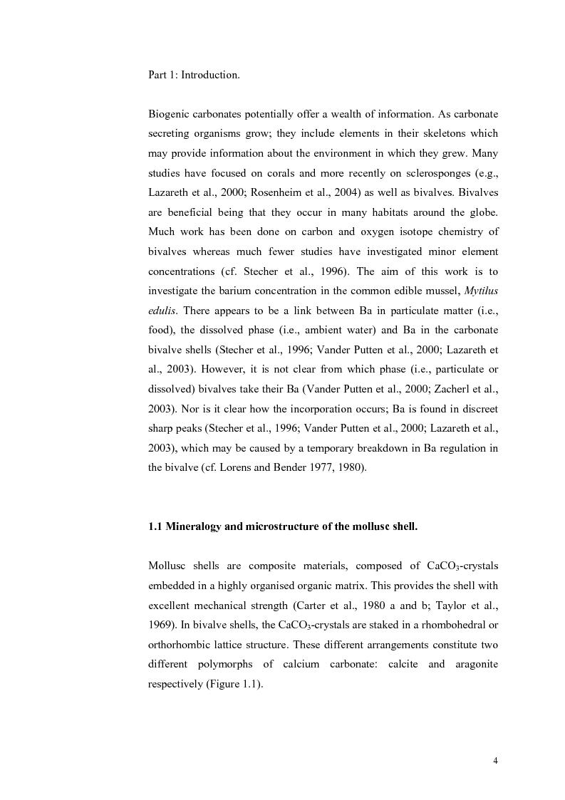 Anteprima della tesi: Do Marene Bivalves record Paleo-productivity?, Pagina 1