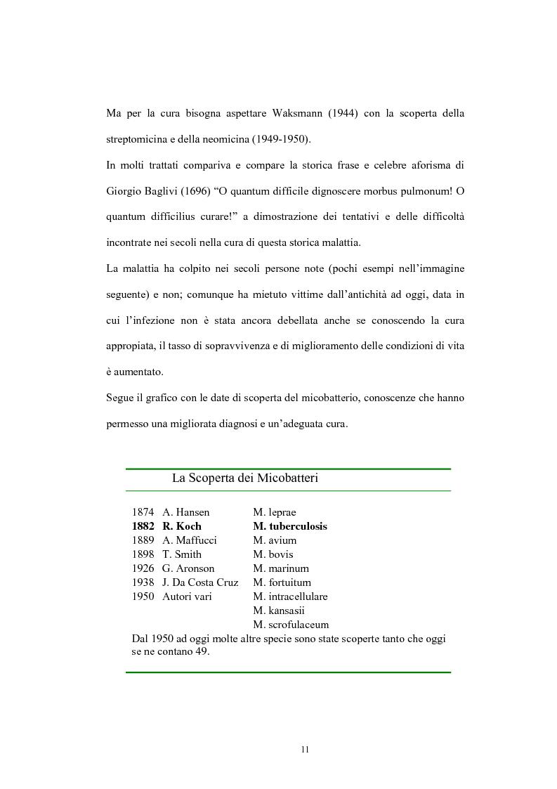 Anteprima della tesi: Immunità cellulo mediata in corso di Tubercolosi: ruolo delle cellule dendritiche, Pagina 7