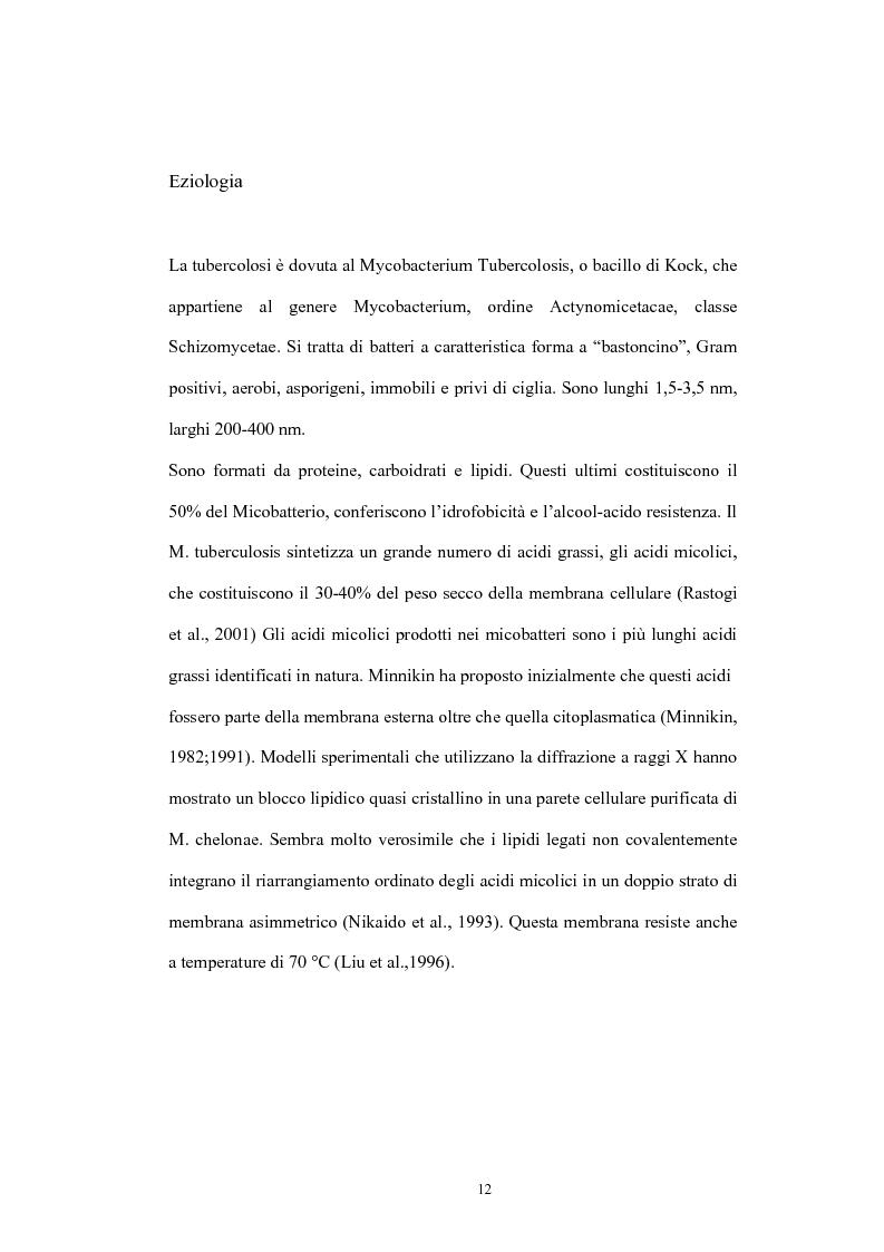 Anteprima della tesi: Immunità cellulo mediata in corso di Tubercolosi: ruolo delle cellule dendritiche, Pagina 8