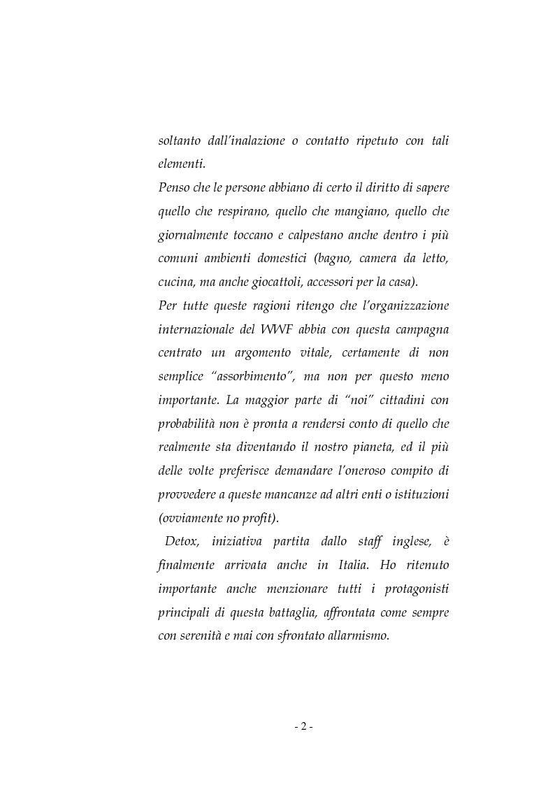 Anteprima della tesi: La pubblicità sociale: WWF e il caso DETOX, Pagina 2