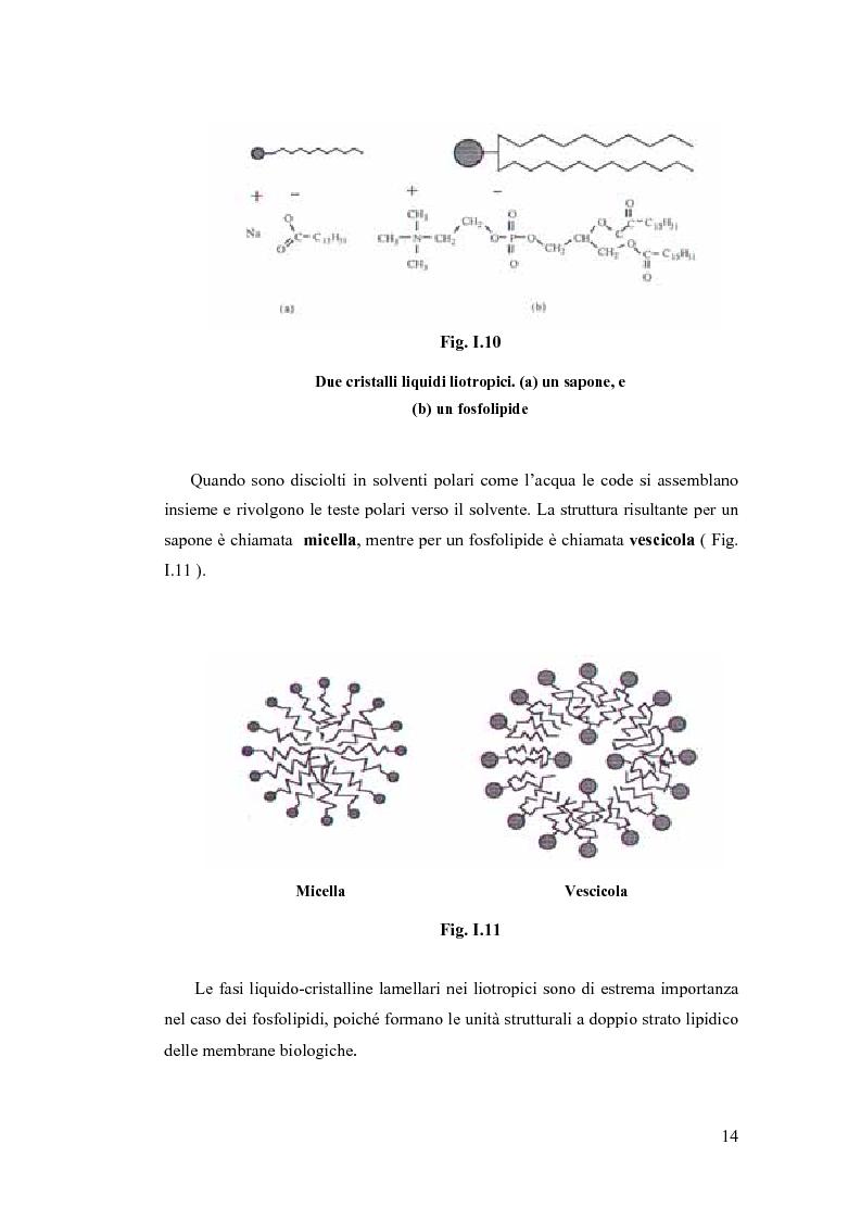Anteprima della tesi: Sintesi e Caratterizzazione Mediante Diffrattometria a Raggi X su Polveri Cristalline a Temperatura Variabile di Nuovi Materiali Liquido-Cristallini, Pagina 9