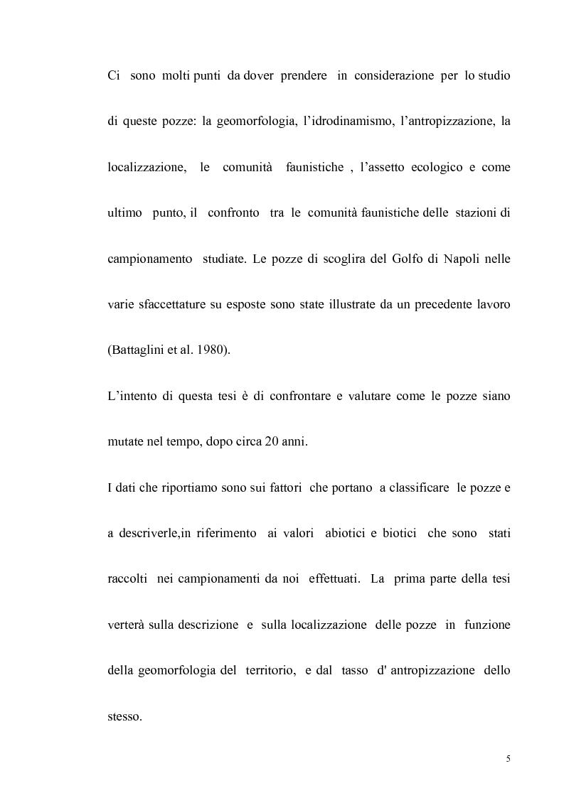 Anteprima della tesi: Primo contributo sullo studio delle comunità animali presenti nelle pozze di scogliera del golfo di Napoli, Pagina 3