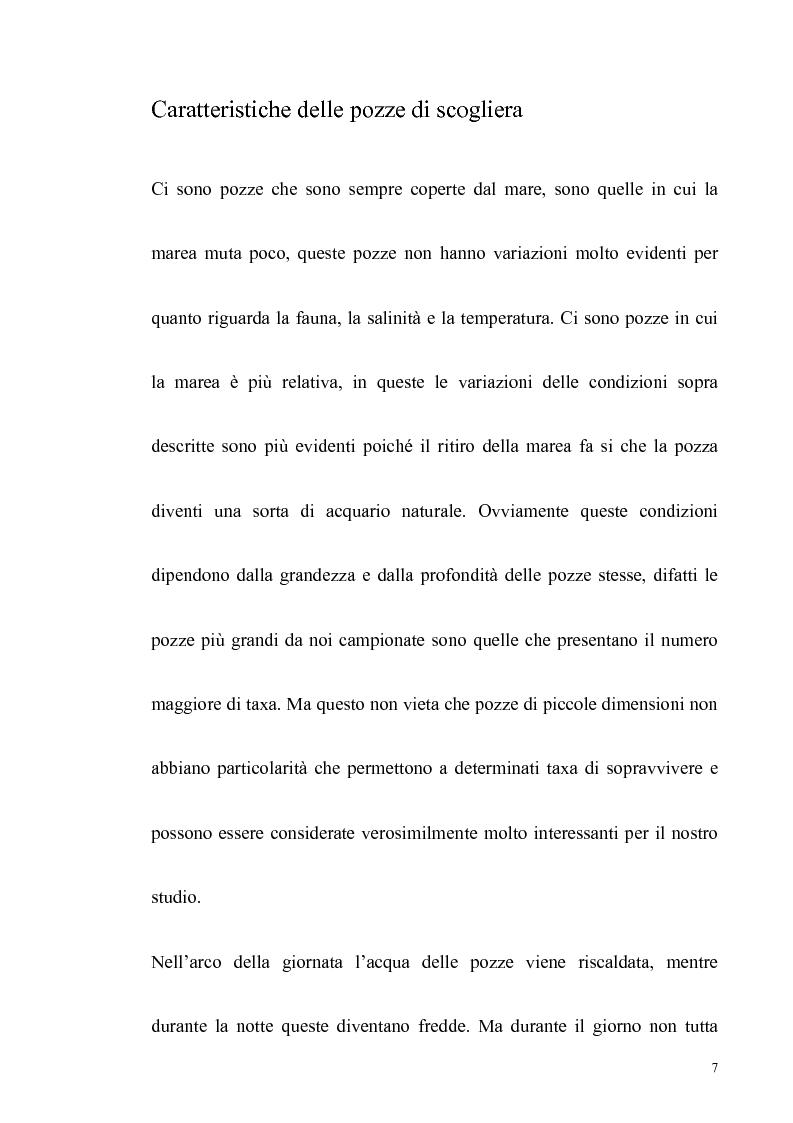 Anteprima della tesi: Primo contributo sullo studio delle comunità animali presenti nelle pozze di scogliera del golfo di Napoli, Pagina 5