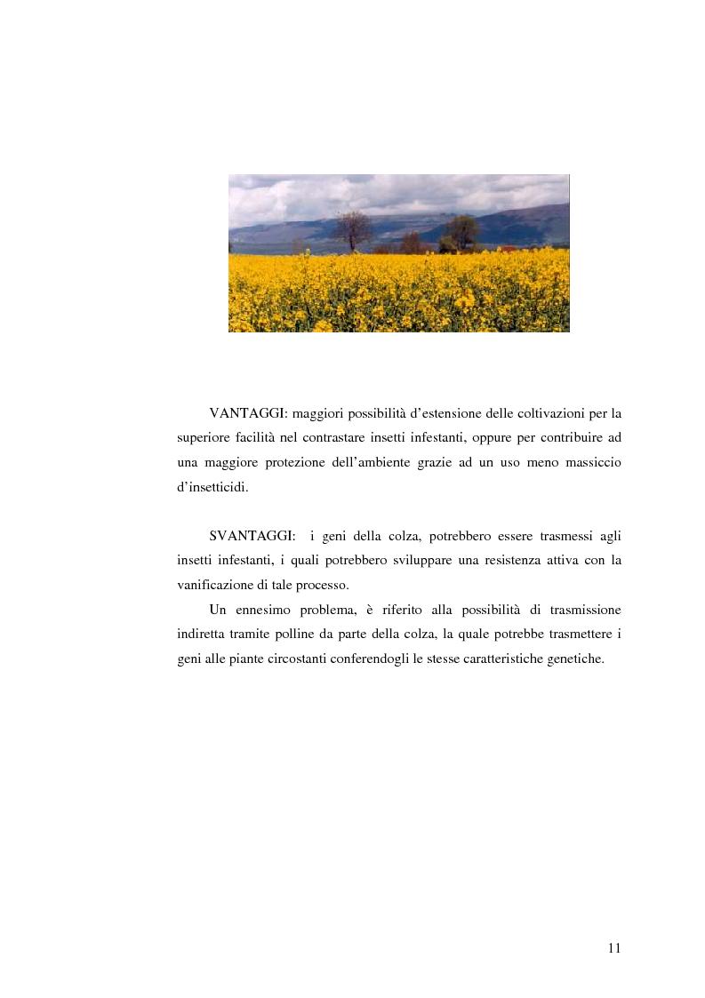 Anteprima della tesi: La comunicazione pubblicitaria nelle biotecnologie, Pagina 9