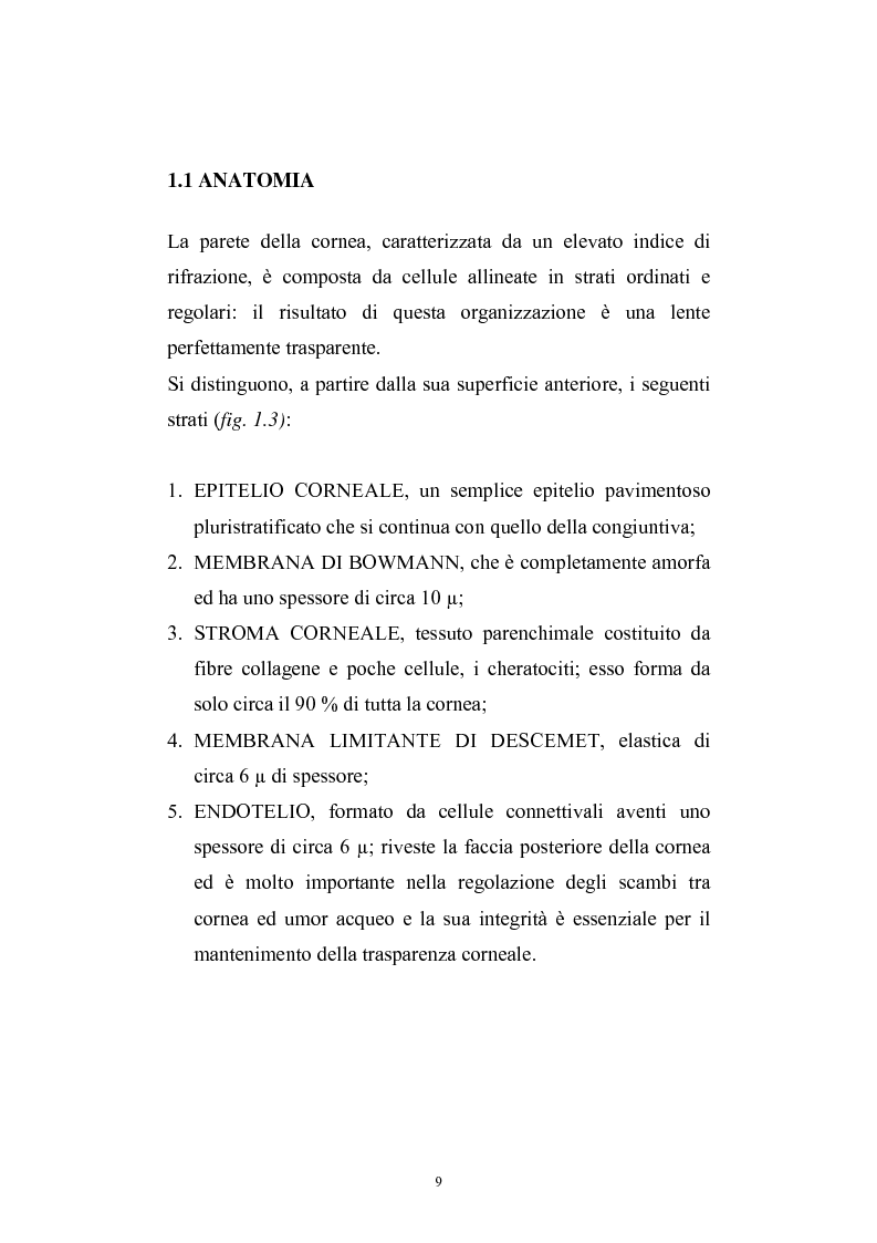 Anteprima della tesi: Studio del profilo di espressione genica in cornee sane ed in cornee affette da cheratocono., Pagina 6