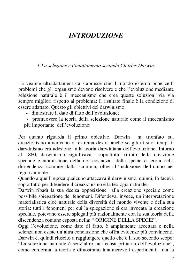 """Anteprima della tesi: """"Isomorfismo ed adattamento organizzativo; l'applicazione alla popolazione d'alberghi della Val Badia e del Bacino Termale Euganeo""""., Pagina 4"""