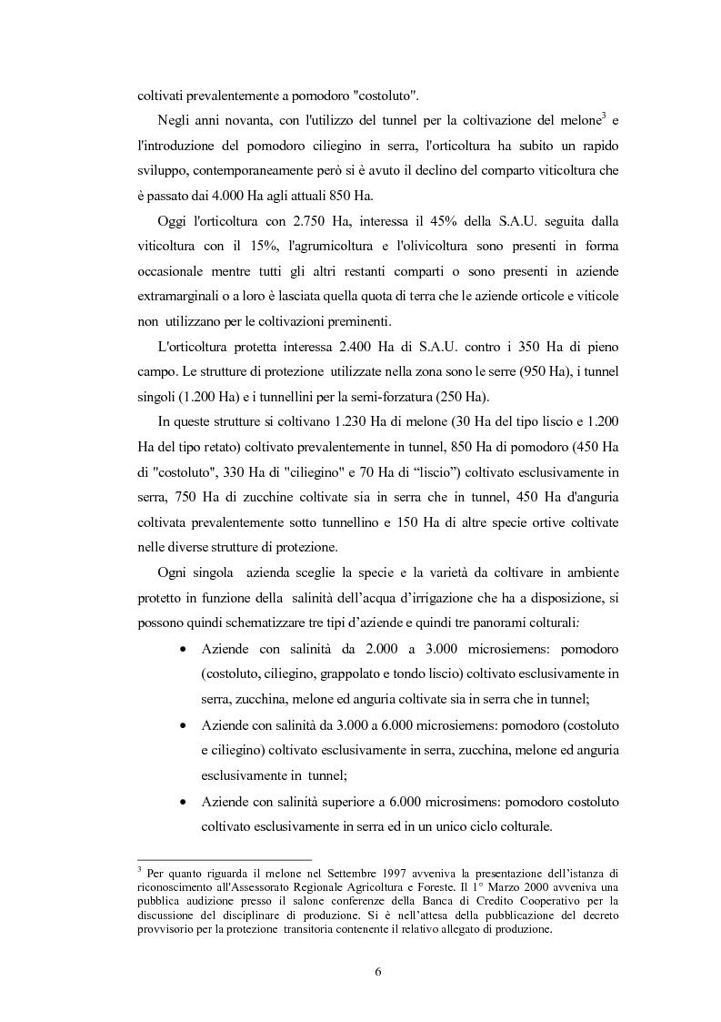 Anteprima della tesi: L'Indicazione Geografica Protetta ''Pomodoro di Pachino'', Pagina 5