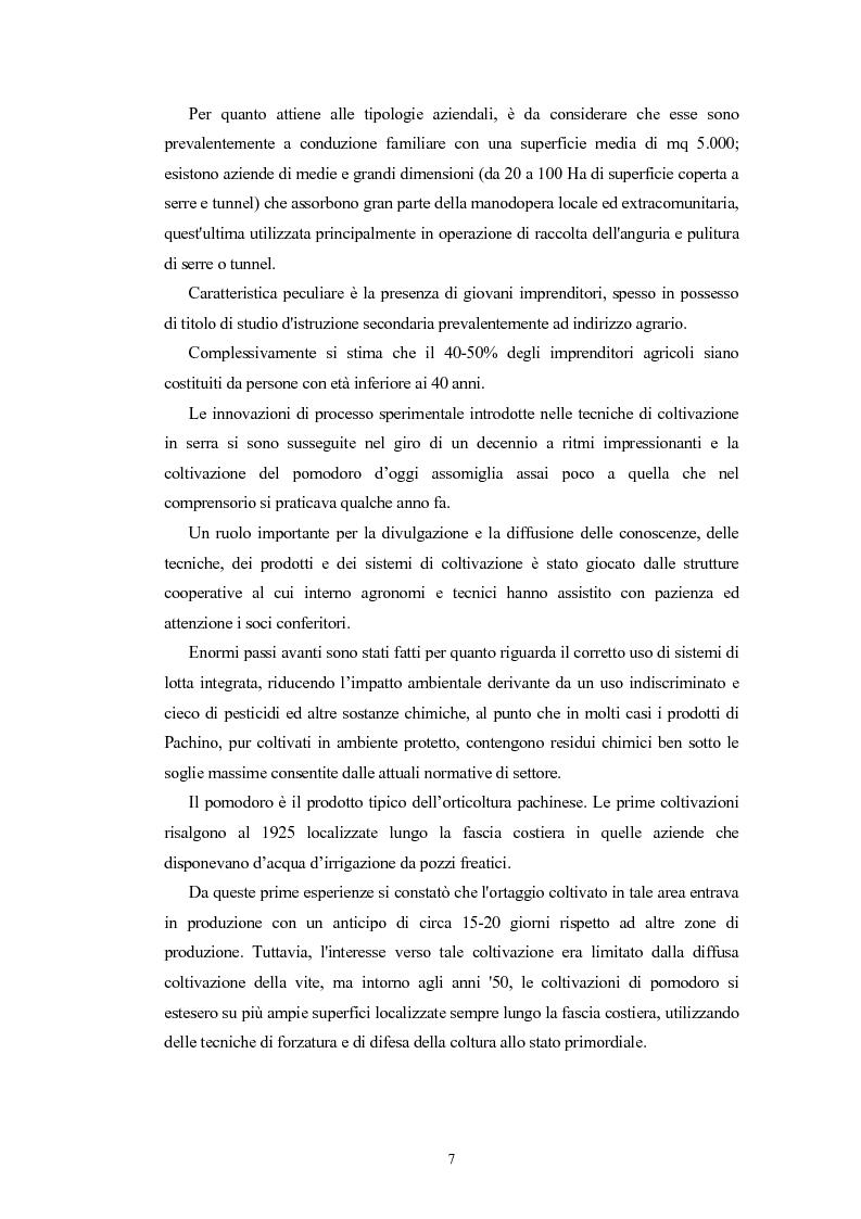 Anteprima della tesi: L'Indicazione Geografica Protetta ''Pomodoro di Pachino'', Pagina 6