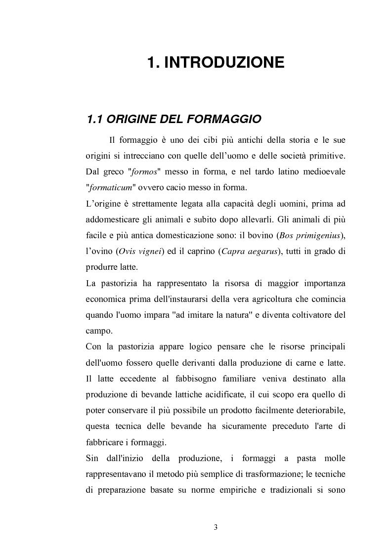 Anteprima della tesi: Studio per il miglioramento del caciocavallo di Vastogirardi, Pagina 1