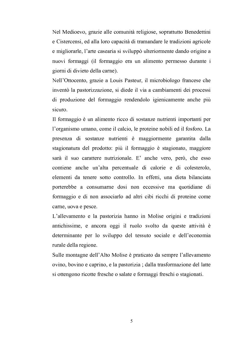 Anteprima della tesi: Studio per il miglioramento del caciocavallo di Vastogirardi, Pagina 3