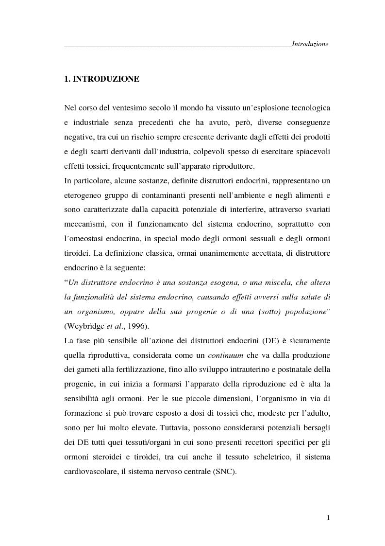 Anteprima della tesi: Alchilfenoli e metalli pesanti ad attività endocrino-mometica: possibili interazioni, Pagina 1