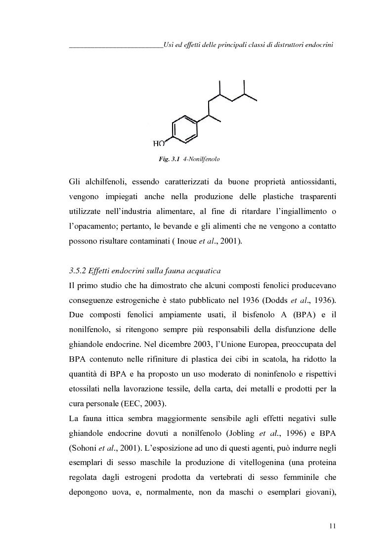 Anteprima della tesi: Alchilfenoli e metalli pesanti ad attività endocrino-mometica: possibili interazioni, Pagina 11