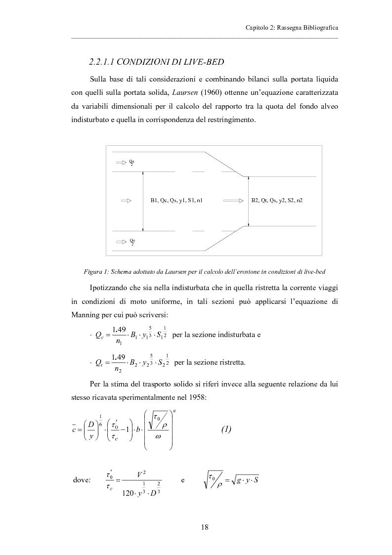 Anteprima della tesi: Indagine sperimentale sull'evoluzione morfologica di un alveo fluviale soggetto a restringimento, Pagina 14