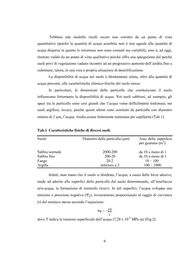 Anteprima della tesi: Variazioni delle relazioni idriche in Helianthus annuus L. durante le fasi vegetative, Pagina 3