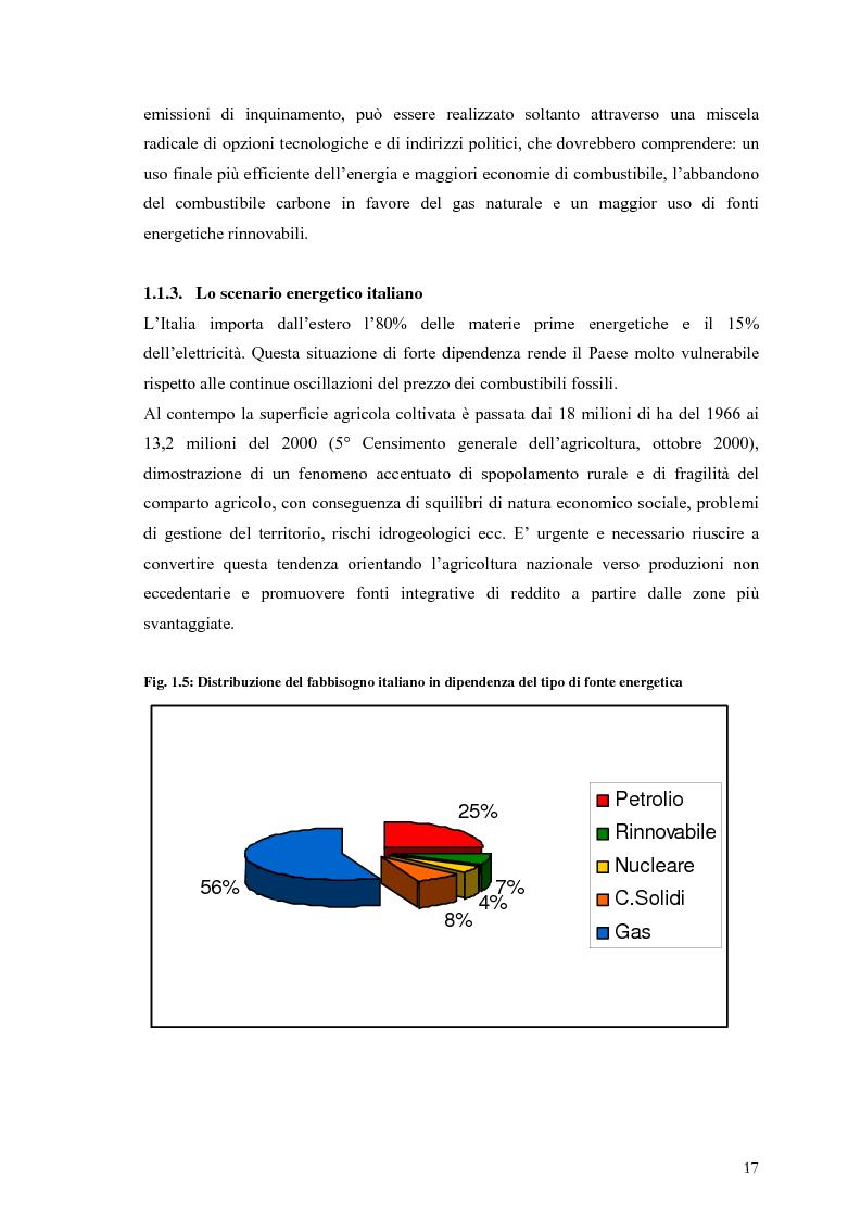 Anteprima della tesi: Analisi e caratteristiche di una nuova filiera di biocarburanti in Toscana, Pagina 11