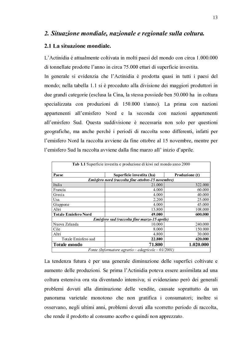 Anteprima della tesi: Filiera produttiva dell'actinidia in Piemonte, Pagina 6
