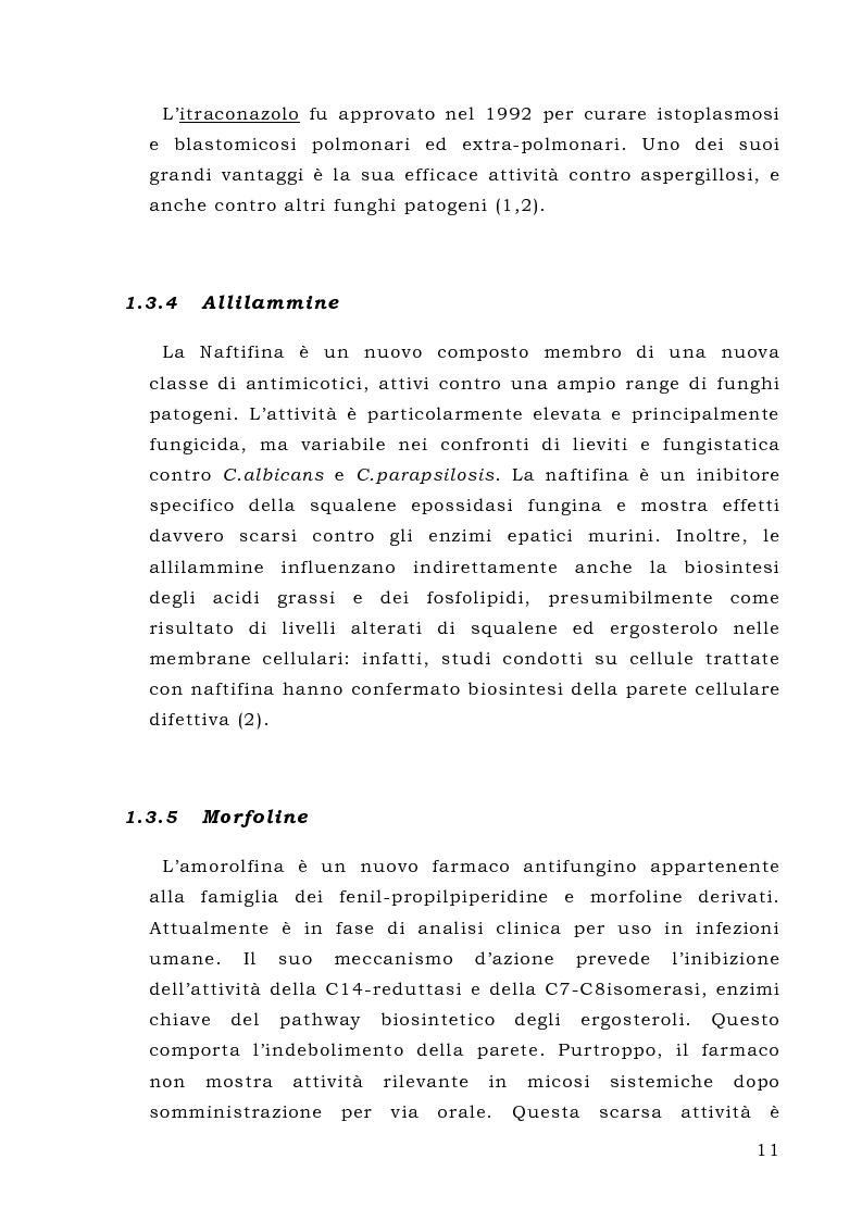 Anteprima della tesi: L'enzima Gas1p, potenziale bersaglio per antifungini: espressione dei singoli domini in Pichia pastoris e loro caratterizzazione, Pagina 11